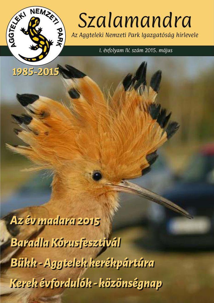 Megjelent a Szalamandra hírlevél májusi száma. Olvasáshoz kattints a képre! #szalamandra #majus #anp