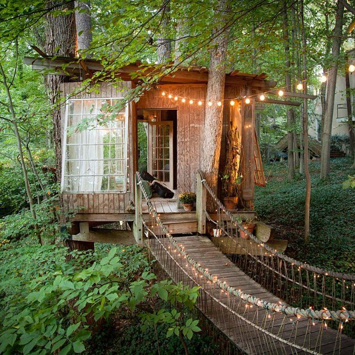 8 Tree House Rentals That Would Make Tarzan Jealous