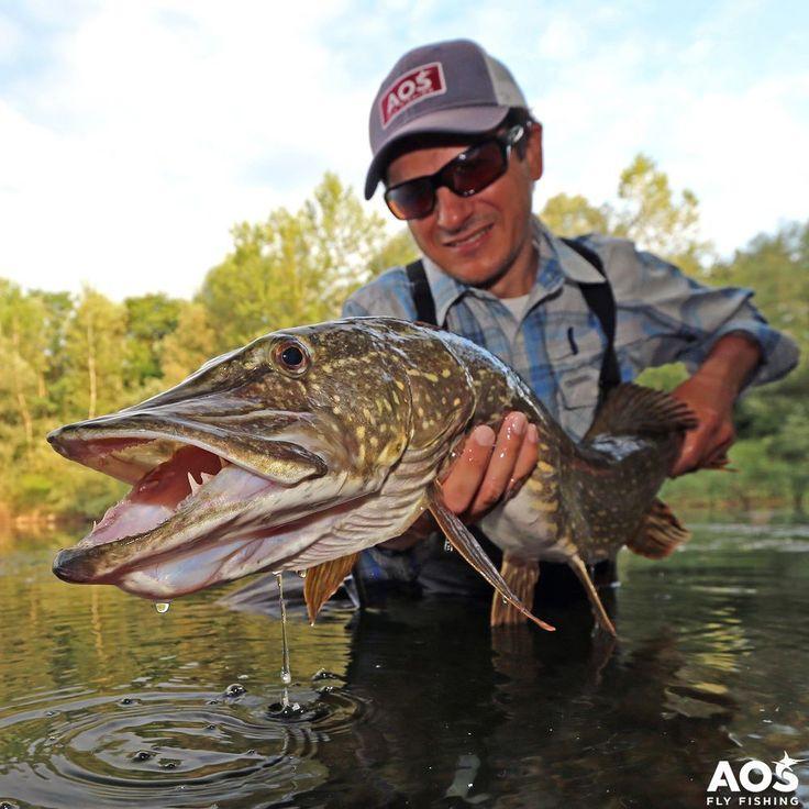 Photo of PIKE! #pike #nothernpike #musky #flytying #aosfishing