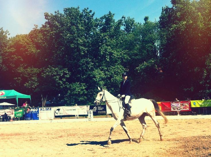 Towarzyskie Zawody Jeździeckie w Ujeżdżeniu Royal Cup 2012 Łazienki Królewskie
