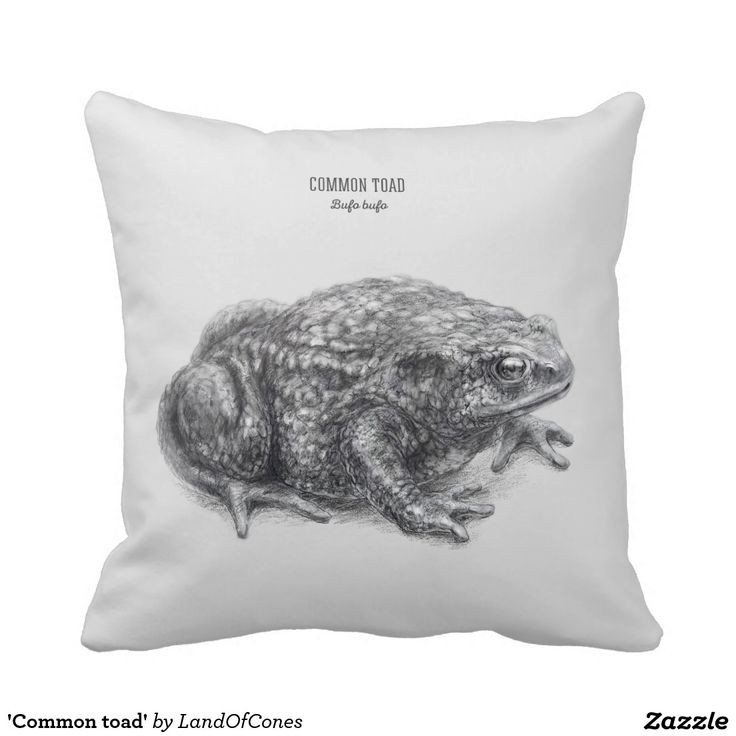 'Common toad' Pillow