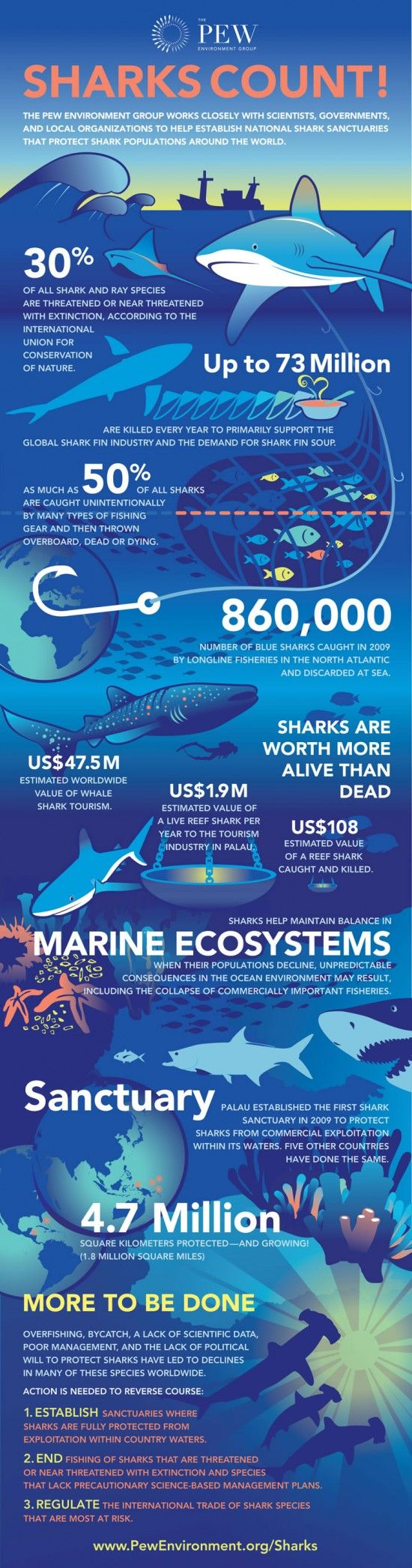 Did you know that one living reef shark in Palau is worth $1.9 million each year, but one sold at market is worth just $108, once? Using peer-reviewed research, this graphic paints—by numbers—why it's important to save sharks and promote global shark conservation. It comes at a time when several nations –including Fiji –around the globe are considering new or greater protections for sharks.