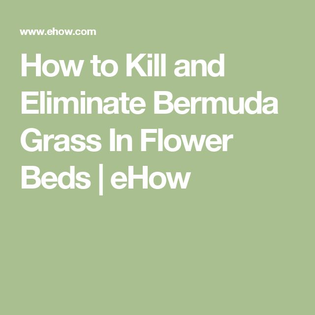 Natural Way To Kill Grass In Flower Beds