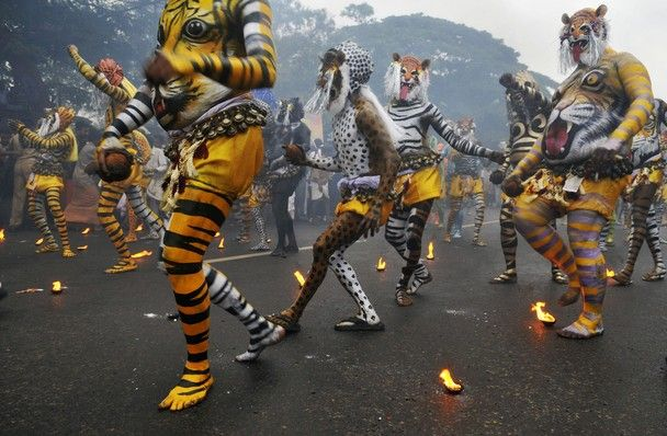 national geographic photography contest 2011-11