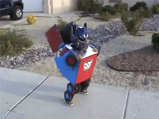 Cosplay de Transformer