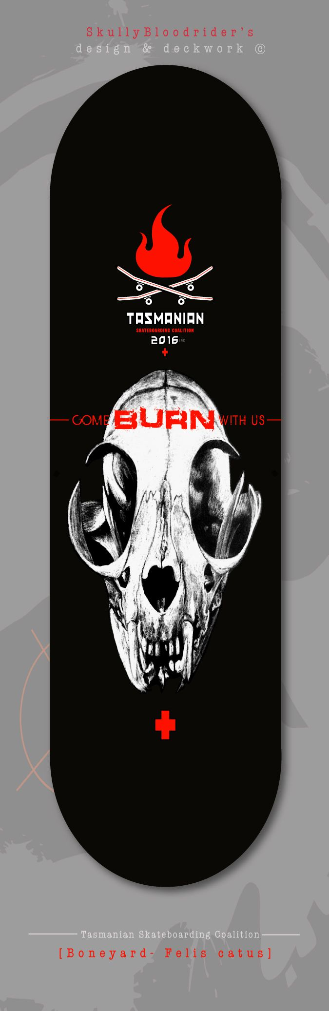 'Boneyard' - Felis catus... deck design, this series is all about life, death & skulls. illustration by: Veronikeehl. Get onboard  Skullybloodrider 4.5.2016.