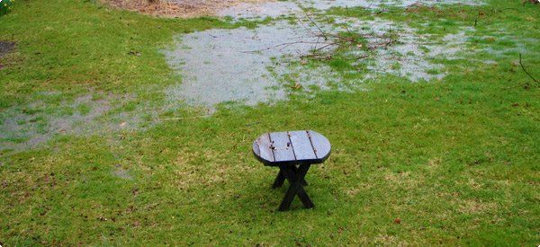 5 Best Flooded Yard Solutions                              …