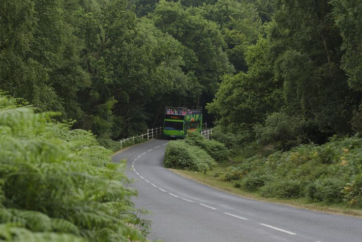 The Green Route bus emerges from the New Forest National Park, on the New Forest Tour.