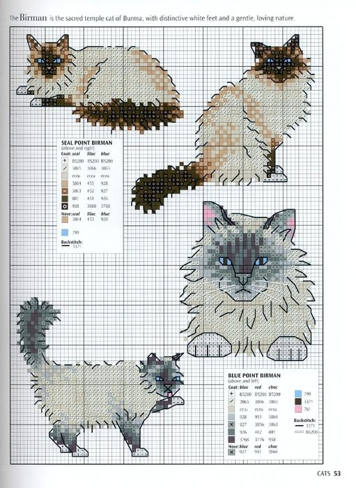 punto de cruz gatos
