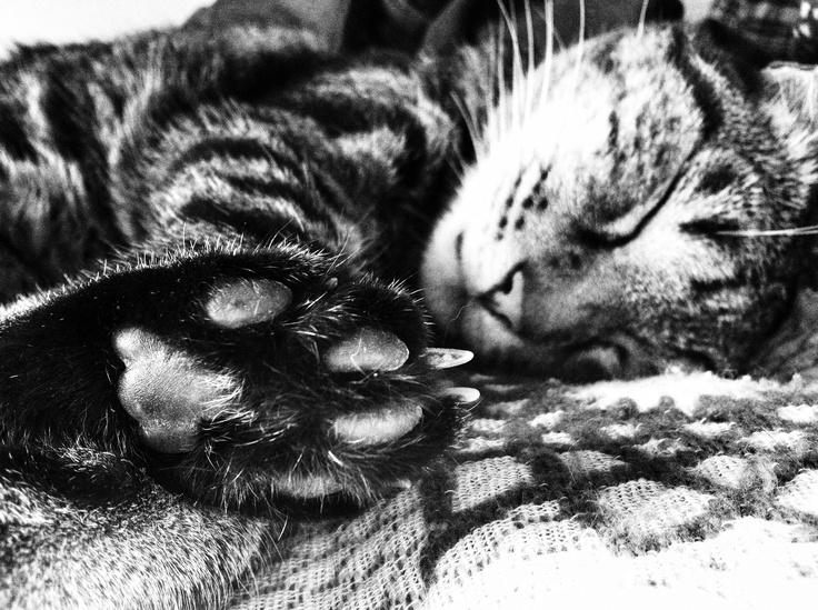 Filippo dorme