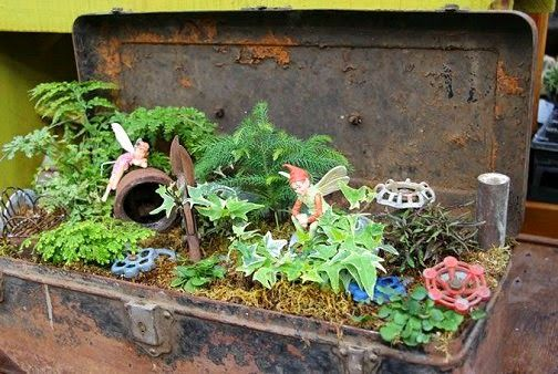 17 best images about miniture gardens on pinterest plant for Dishfunctional designs garden