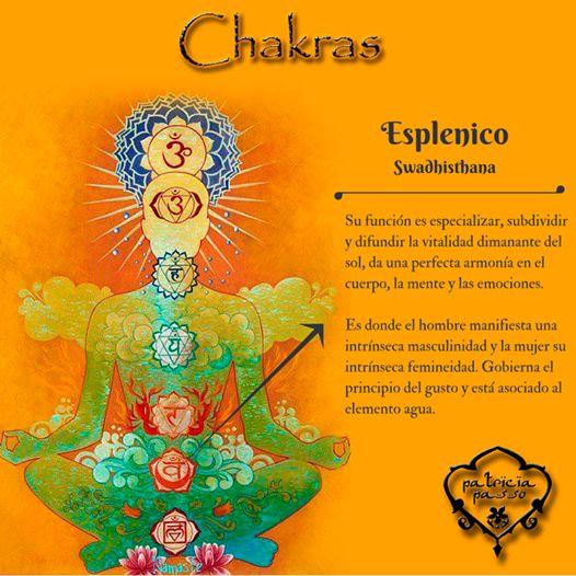 """Swa significa """"lo que es y le pertenece al yo"""" y Dhisthana """"su lugar real"""". El #chakra esplénico está íntimamente relacionado con el del plexo solar. Controla y energetiza el intestino delgado, la parte inferior del intestino grueso y el apéndice, también tiene influencia sobre el sistema nervioso y la temperatura del organismo."""