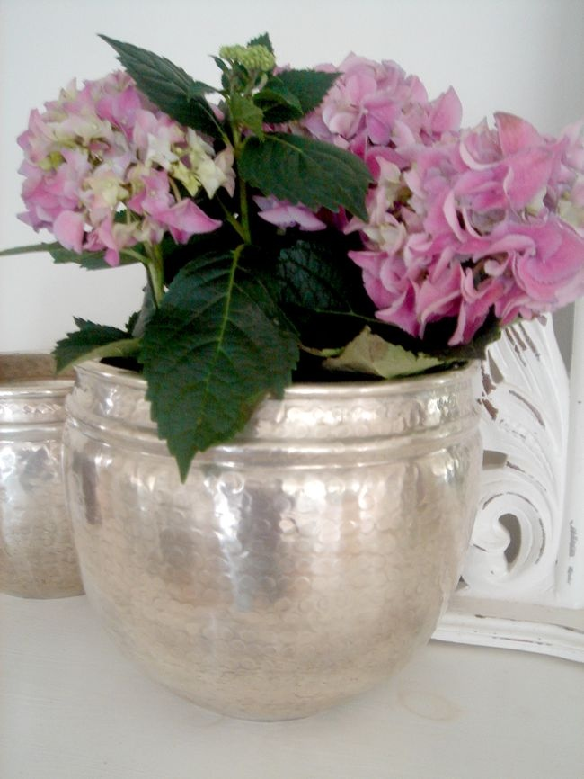 Silver Flower Pot For The Love Of Interiors Pinterest