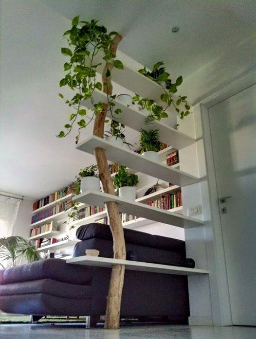 Etagères arbre dans la maison