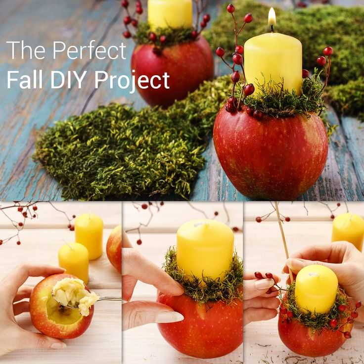 The Perfect Fall DIY Project for the Holidays   Steps: 1. Place the candle on top of the apple and use the knife to mark the outer edges. 2. With a spoon, dig out the area of the apple that needs to fit the candle. 3. Place the candle inside the hole. 4. Add the moss and cranberries around the candle. 5. And that's it, a beautiful candle in minutes!