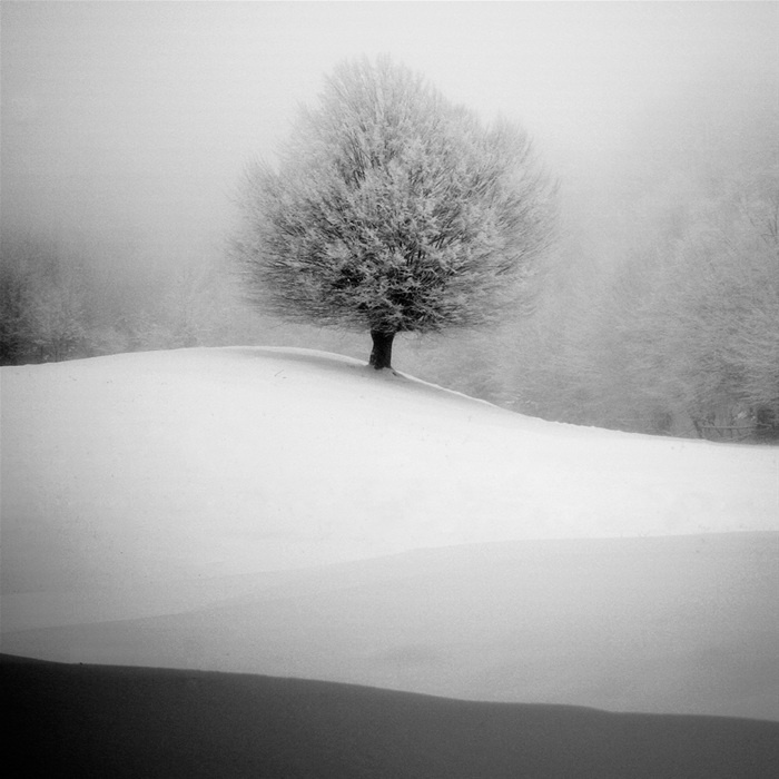 winter: Winter Snow, Natural Photography, White Photography, Black And White, Inspiration Photography, Black White, Cruceru Fineartphotographi, Fineartphotographi Photography, Photography Inspiration