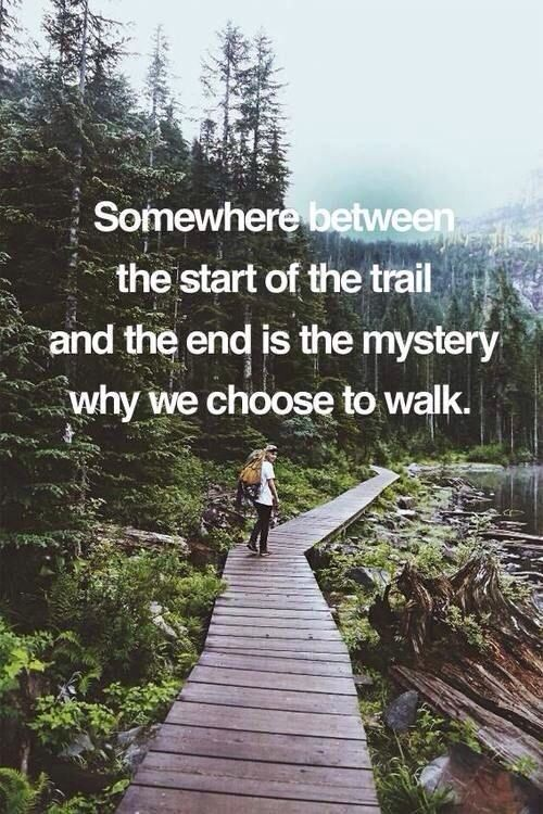 Quotes About Paths And Trails. QuotesGram