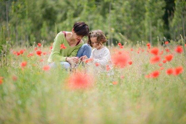 Verano, mosquitos y niños suelen ser una combinación temida, ¿cómo hacerlo frente? Conócelo en nuestro blog
