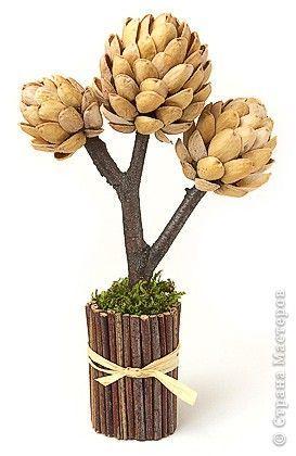 Stromeček z pistácií
