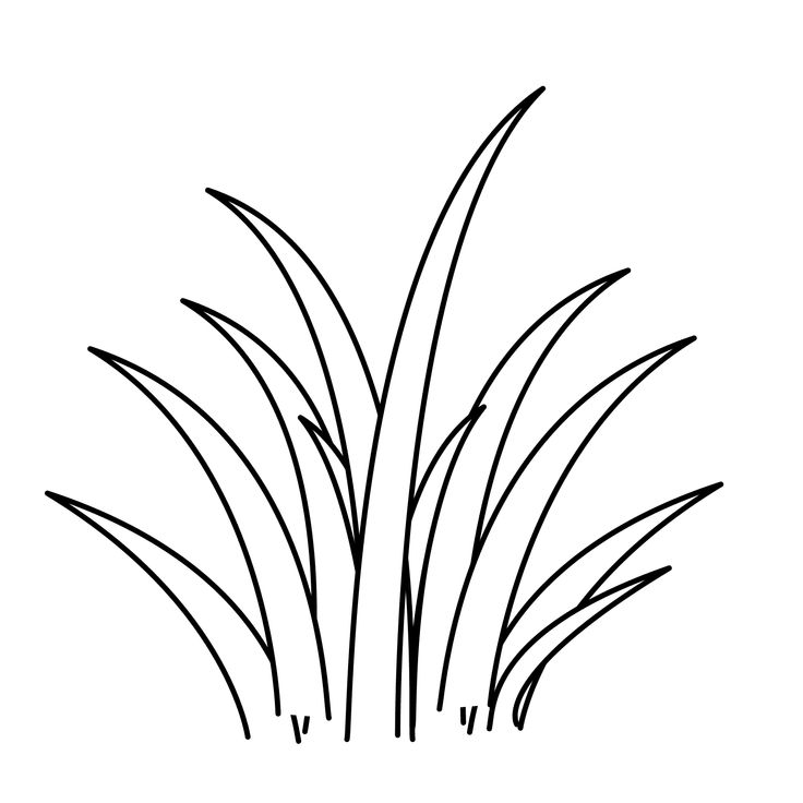 yard grass coloring pages - photo#17