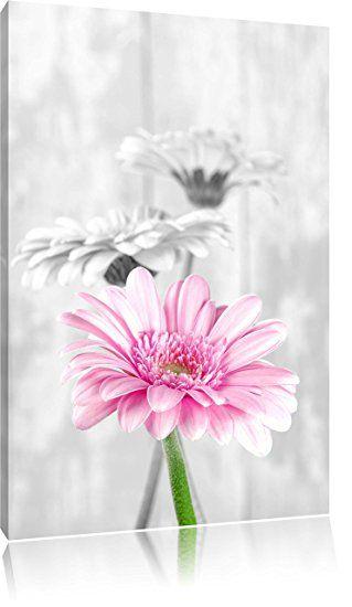 schöne Gerberas bei Tageslicht schwarz/weiß Format 60x40 - Bilder