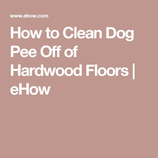 The 25 Best Cleaning Dog Pee Ideas On Pinterest Dog