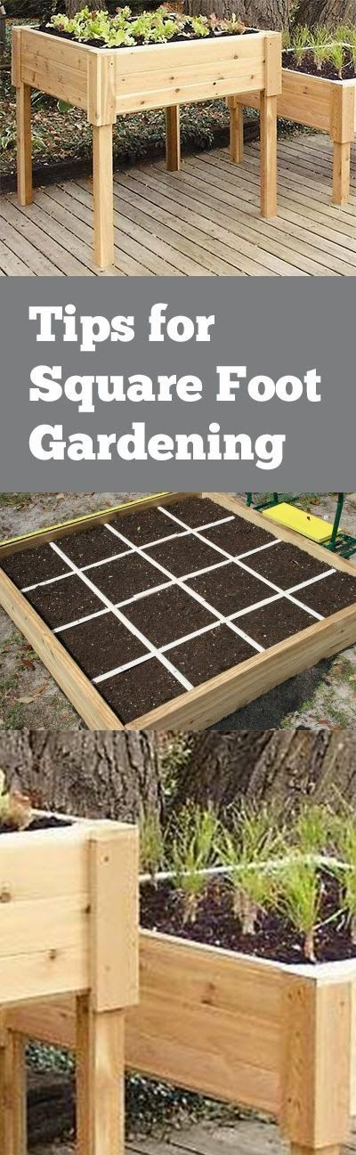 Tips for Square Foot Gardening. Great ideas for square foot gardening in your yard or landscape....