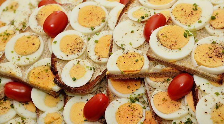 #Comer una sola vez al día puede afectar al ser humano - La Neta Noticias: La Neta Noticias Comer una sola vez al día puede afectar al ser…