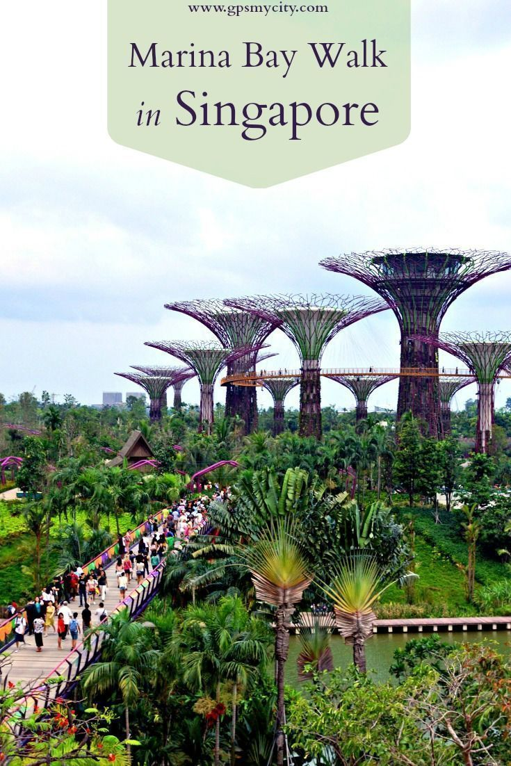 Marina Bay in Singapore has just about something for everyone, whether you are looking for a lovely place to walk, a theater for top cultural activities, malls filled with great shops or delicious cuisines in fine restaurants.