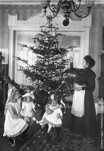 A Christmas tree in an Edwardian parlour. (Photo by Hulton Archive/Getty Images). Circa 1905.