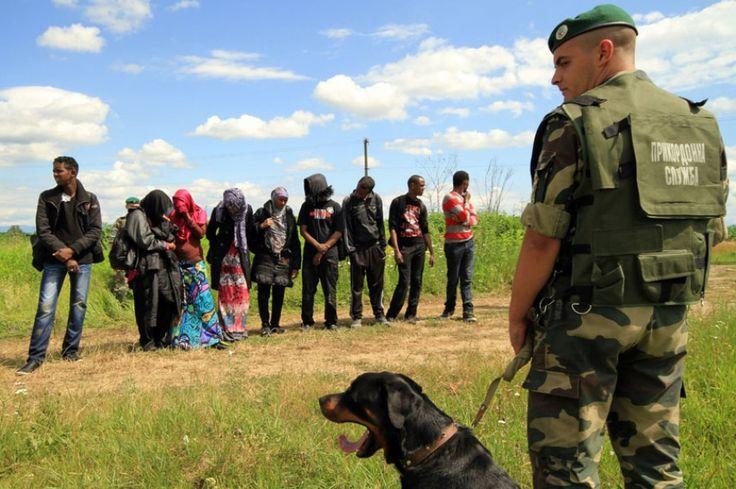 Сотрудники силовых структур Украины задержали при прохождении пограничного контроля группу Сирийцев, которые пытались незаконно попасть на территорию Украины.