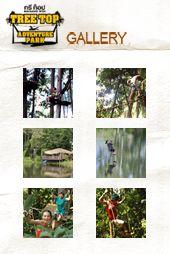 Tree Top Adventure Park Thailand- Koh Chang, Pattaya