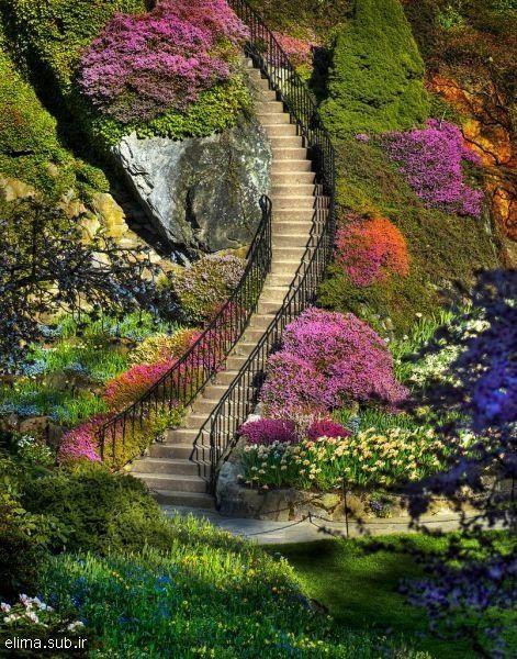 butchart gardens. british columbia