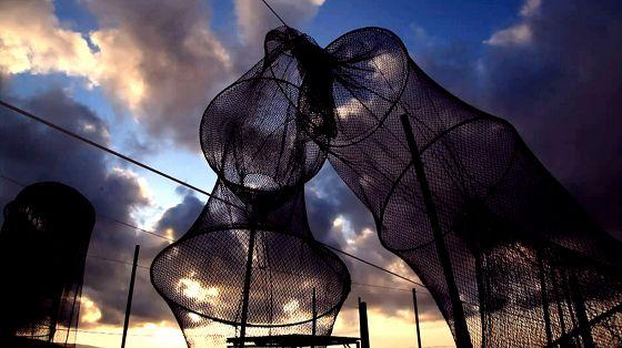 I cavalieri della laguna. Eroi eco-sostenibili. Il documentario di Walter Bencini: il racconto umano dei pescatori di Orbetello