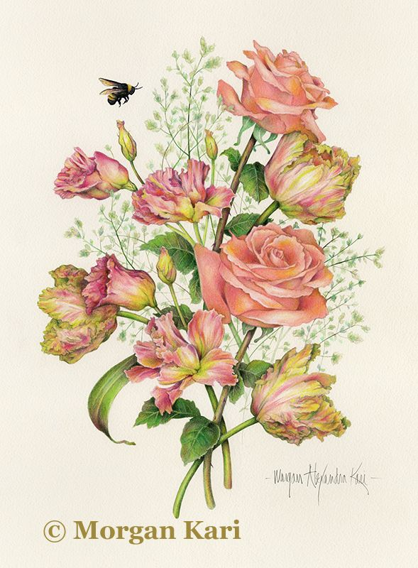 """BUMBLE BEE BOUQUET / by Morgan Alexandra Kari / 22"""" x 18"""" framed original Colored Pencil over Watercolor on Saunders Waterford hot press paper / 22"""" x 18"""" Quality Giclee prints available for $160 plus shipping and handling"""