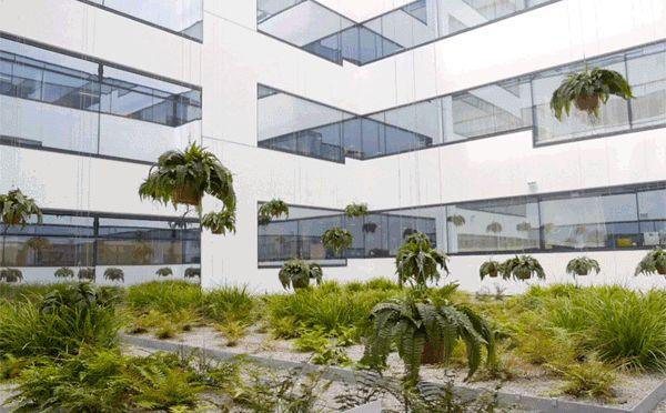 """Uma instalação cinética permanente ocupa os pátios internos de uma instituição para idosos, em Viena, na Áustria. """"Flying gardens"""" é composta samambaias que se movem no meio do jardim, que não é acessível, permitindo sua contemplação também pelos residentes que não podem se mover. O projeto foi concebido em 2012, por mischer'traxler studio e Martin Robitsch, com curadoria do LiquidFrontiers, mas realizado anos mais tarde. Amamos! #jardim #design #paisagismo #arquitetura"""