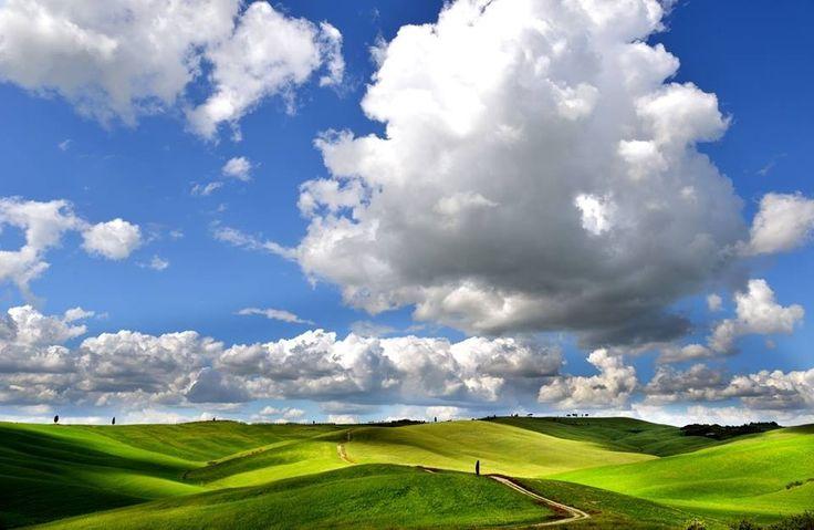 Tuscany - Val d'Orcia - hills & numbs - www.lucascutigliani.tumblr.com - #repin
