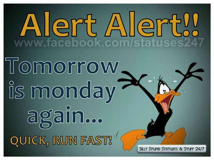 Tomorrow Funny Quotes Quotesgram: 42 Best Images About Days Of The Week Sayings On Pinterest