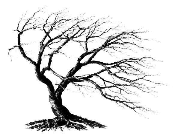 ståltrådstræer