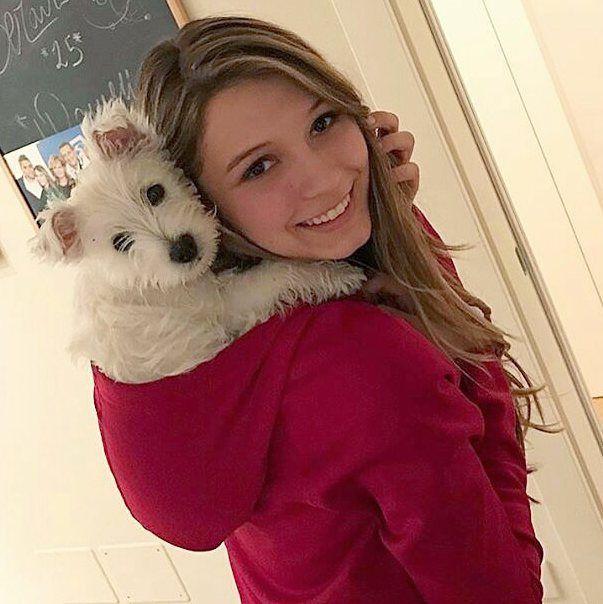 Un cucciolo di koala!  Ah no.  Mia & Francy  Seguici e tagga #BauSocial per un Repost!  Segui anche: @miaosocial  Foto di: @frencyfa  Mia  ma i cani saranno la cosa più dolce del mondo?! #happiness #westhighlandwhiteterrier #puppy #westie #home #cane #dog #love #cure #happy #red #friends #tbt #iphonesia #amazing #beautiful #bestoftheday #sweet #girl #blonde #gorgeous #italia #milano
