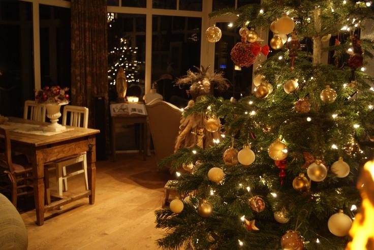 Onze kerstboom 2011