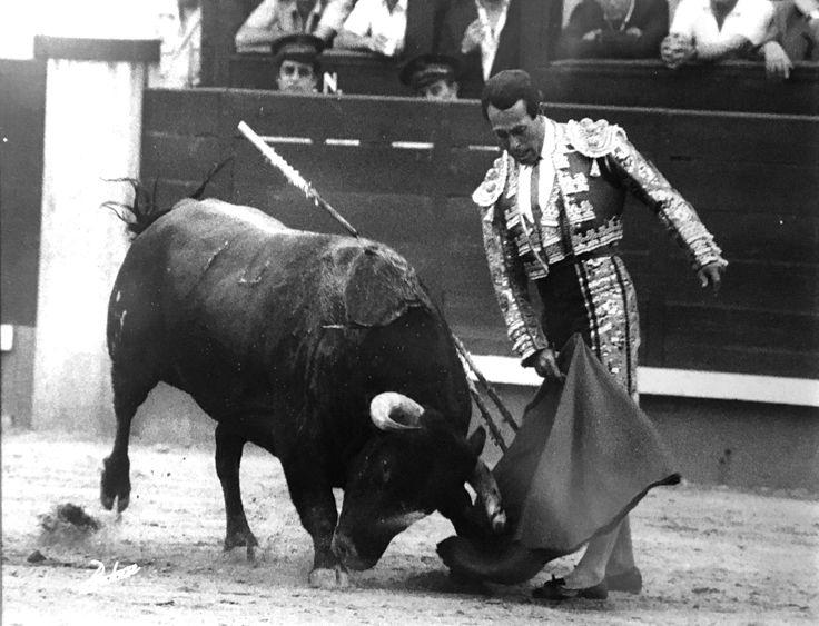 Curro Romero. Fotografía Botan.