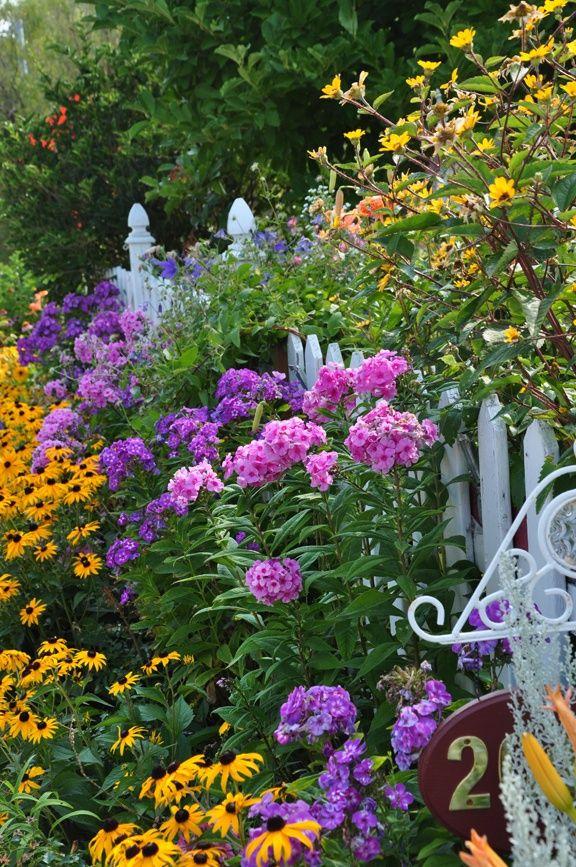 cottage garden along Beautiful gorgeous pretty flowers