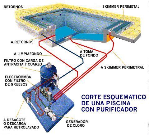 Piscinas de hormigon armado in situ. Piletas de natacion ecologicas y naturales. Agua pura sin cloro