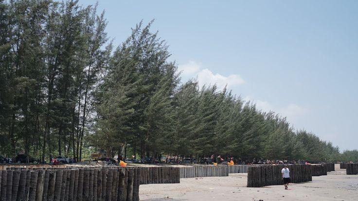 5 Tempat Wisata Pantai Kalimantan Timur yang Menarik Dikunjungi - Kalimantan Timur