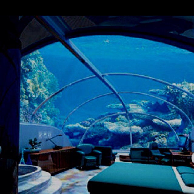 Nautical bedroomDreams Bedrooms, Buckets Lists, Private Island, Underwater Hotels, Underwater Room, Places, Hotels In Dubai, Underwater Bedrooms, The Sea