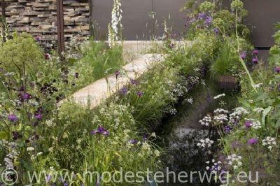 Modeste Herwig - MOH-0508-3438