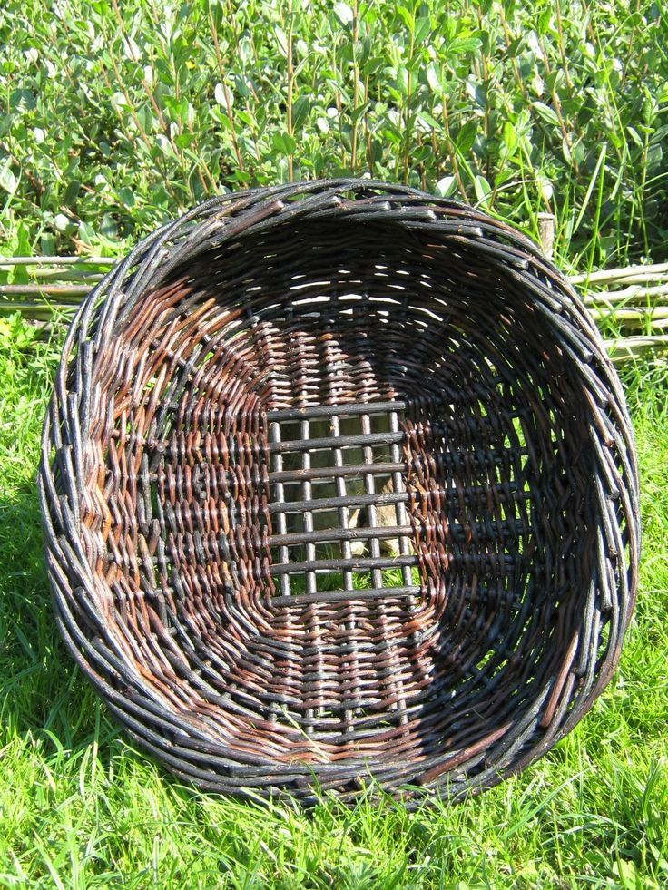 black willow tray