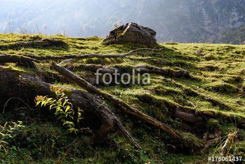"Download the royalty-free photo ""Landscape in Mont Hochfelln, Bavarian Alps"" created by stillforstyle at the lowest price on Fotolia.com. Browse our cheap image bank online to find the perfect stock photo for your marketing projects!"
