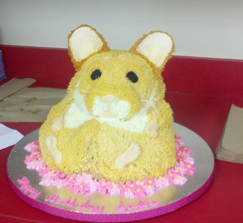 This may be the winning hamster cake!